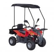 E-ATV  500W  / 2000W